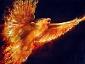 phoenixc
